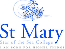 Main stmary logo 02